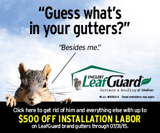 LeafGuard Digital Ad 1